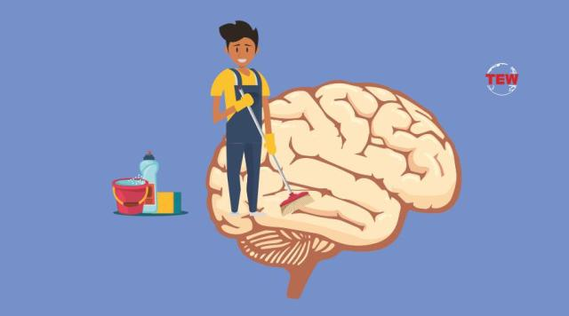 A man Cleaning brain by cleaner