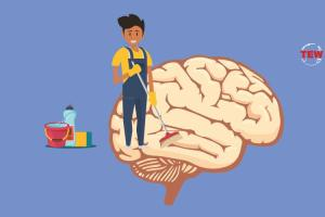 How to clean your brain of toxins