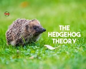 The hedgehog theory- the enterprise world