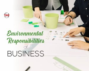 Environmental responsibilities for Business