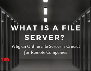 What is a File Server? Why an Online File Server is Crucial for Remote Companies?