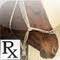 Horse Medicine
