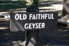 Old Faithful Sign