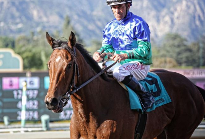 'Wicked Fast' American Mare Could Be Everest Wildcard