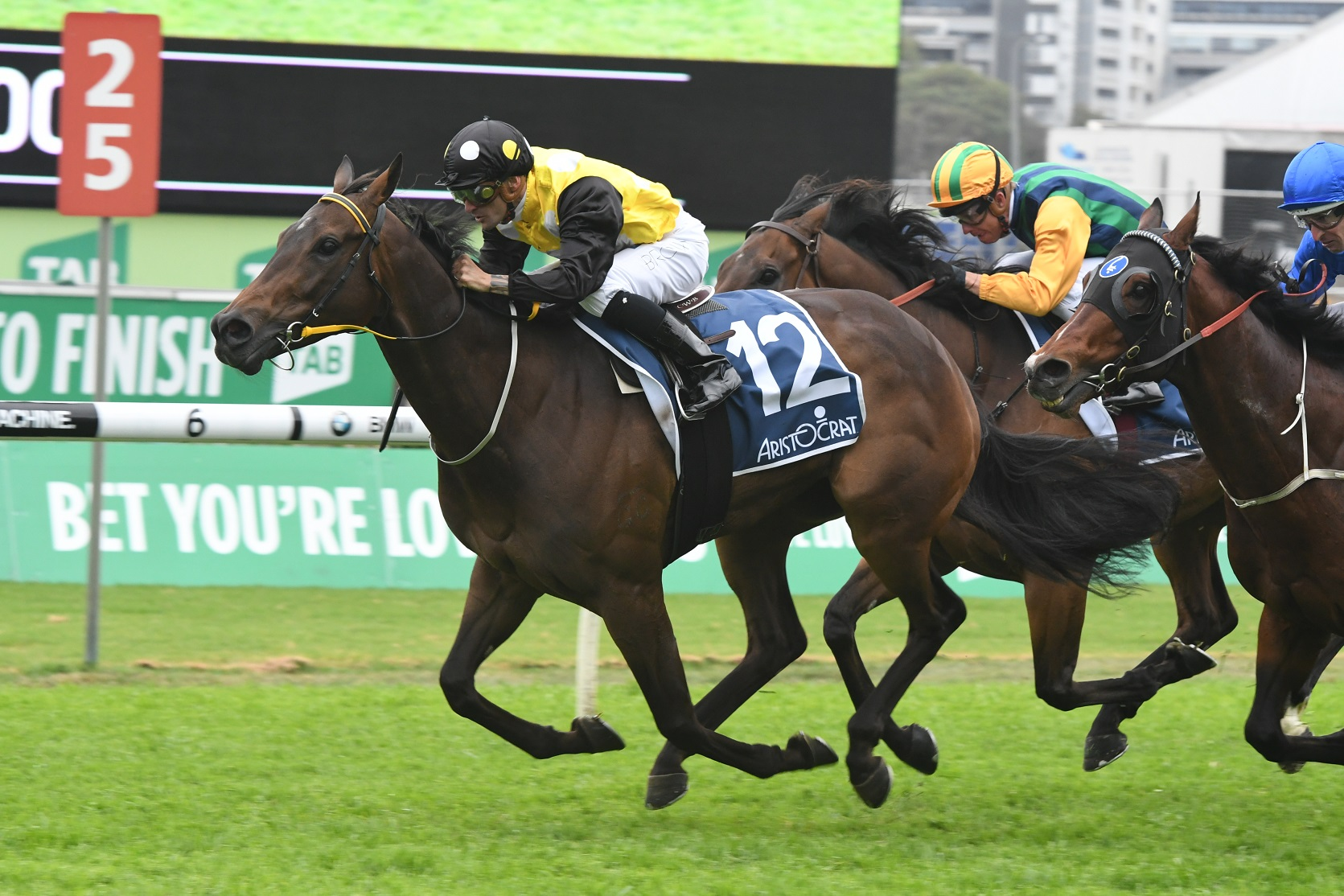 In Her Time's Everest Slot A 'No-brainer' For TAB