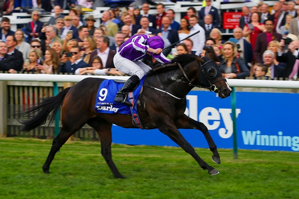 U S Navy To Fly Everest Flag For Coolmore