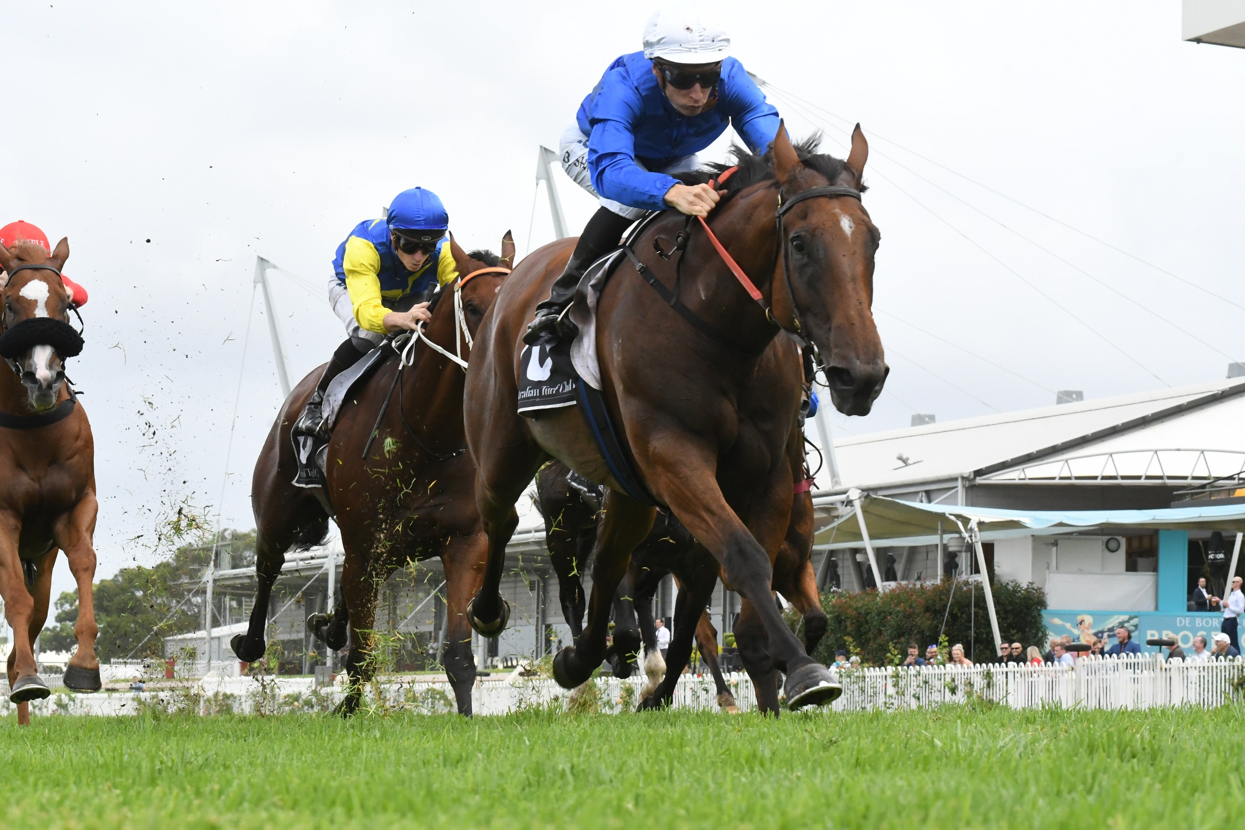 Everest Audition Looming For Alizee