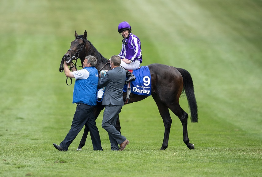 Sovereigns In Quarantine For Everest As Coolmore Bides Time