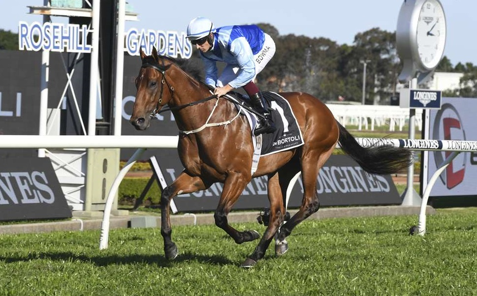 "Aquis Takes ""Educated"" Everest Gamble On Farnan"