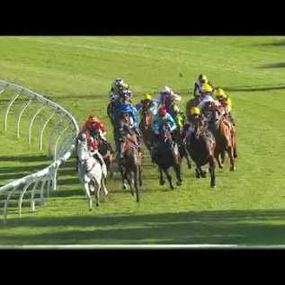 2020 G1 All Aged Stakes: Tofane