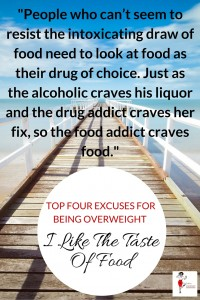 Excuse For Being Overweight - I Like The Taste Of Food -Pin