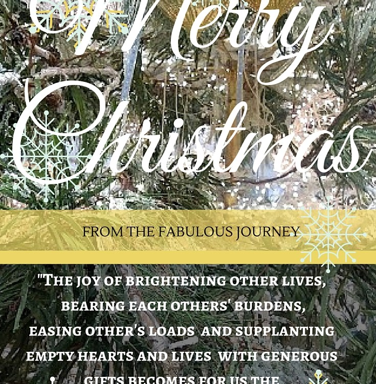 Christmas Greeting From The FABulous Journey