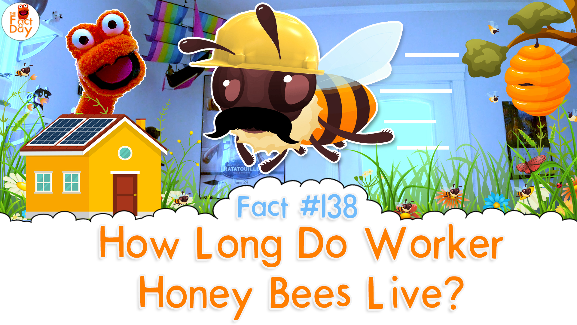 The Fact a Day - How long do honeybees live