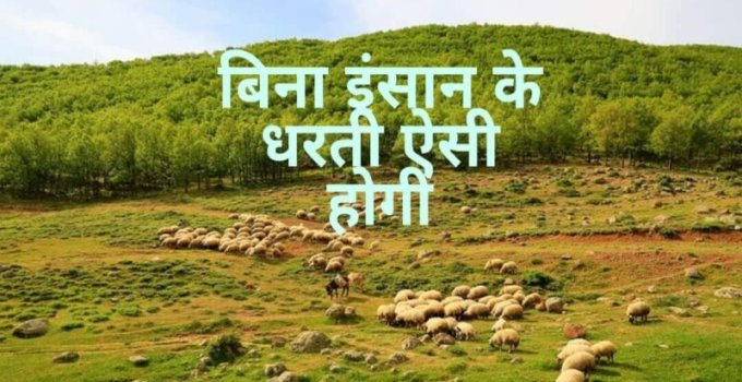 Earth without Humans in Hindi | क्या होगा पृथ्वी का अगर इंसान चले जाए?