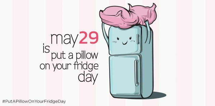 Put A Pillow On Your Fridge Day  May 29  The Fact Site