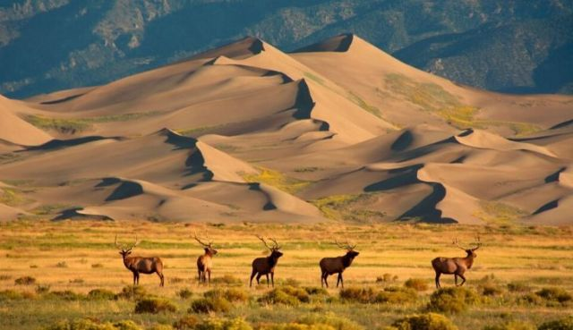 The Great Sand Dunes National Monument, Colorado