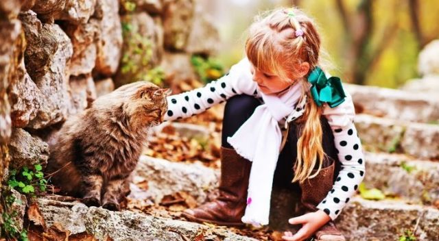A child petting a cat outdoors