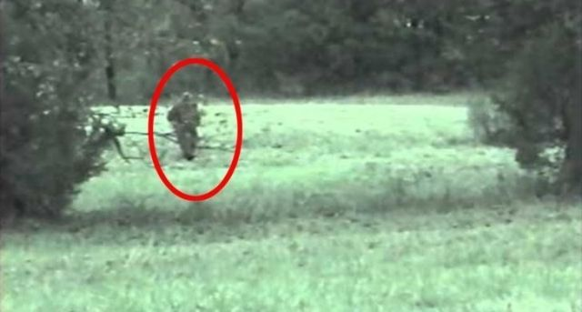 Alleged sighting of the Fauke Monster of Arkansas