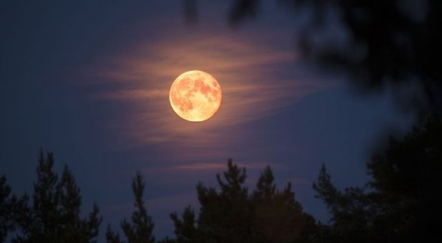A full pink moon shining brightly in the April night sky