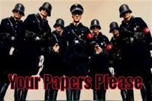 paper-please