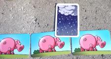 Rain card and 3 clean pigs