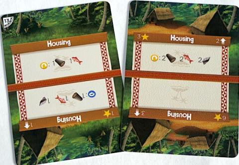 Palm Island housing card