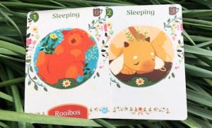Sleeping dragon cards