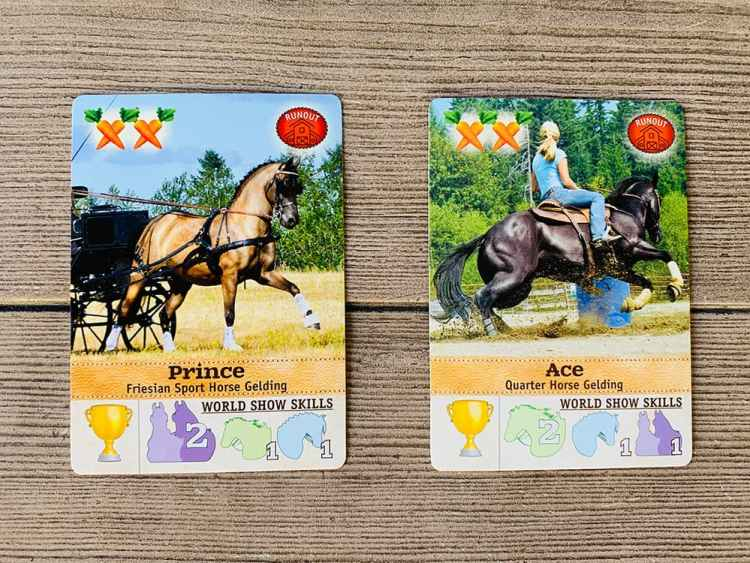 World Class (Trophy) horses Prince and Ace
