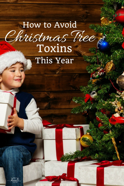 How to Avoid Christmas Tree Toxins This Year | The Family That Heals Together