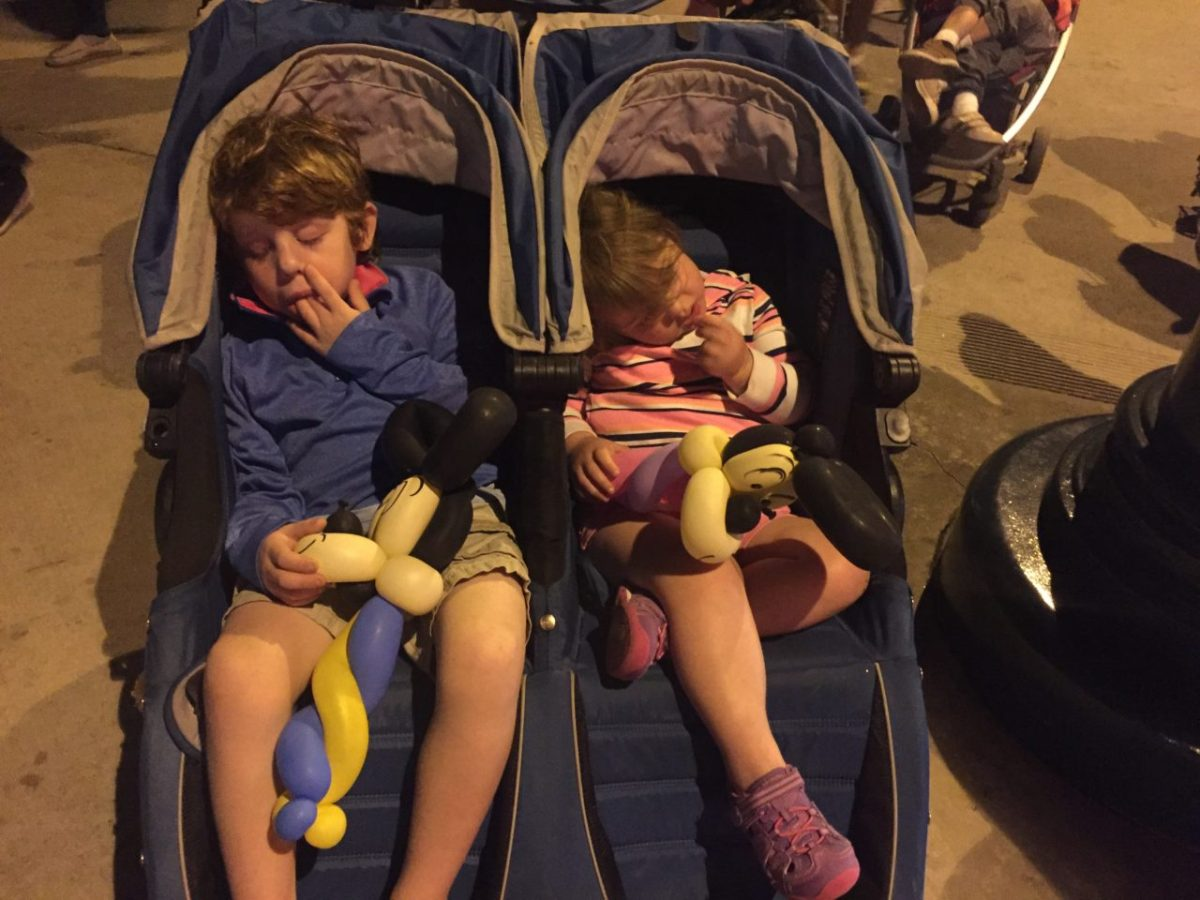"""Should you take a stroller to Disneyland? With two kids we say """"yes!"""" The Baby Jogger City Mini double makes a perfect Disneyland stroller for two kids."""
