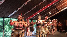 Tamaki Maori Village Rotorua-22