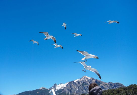 things to do in Bariloche Argentina-20