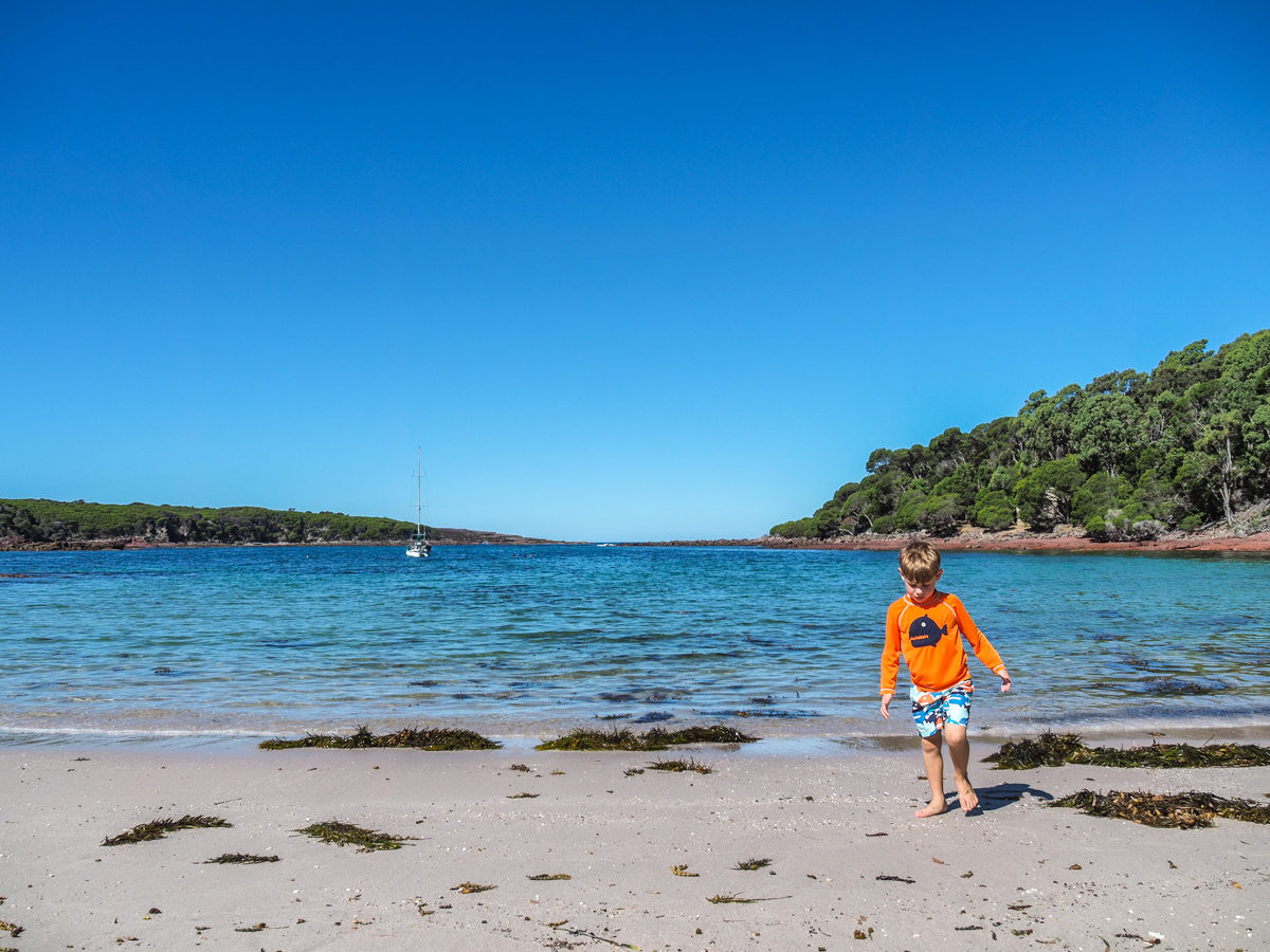 Bittangabee Bay - things to do in Eden, Australia
