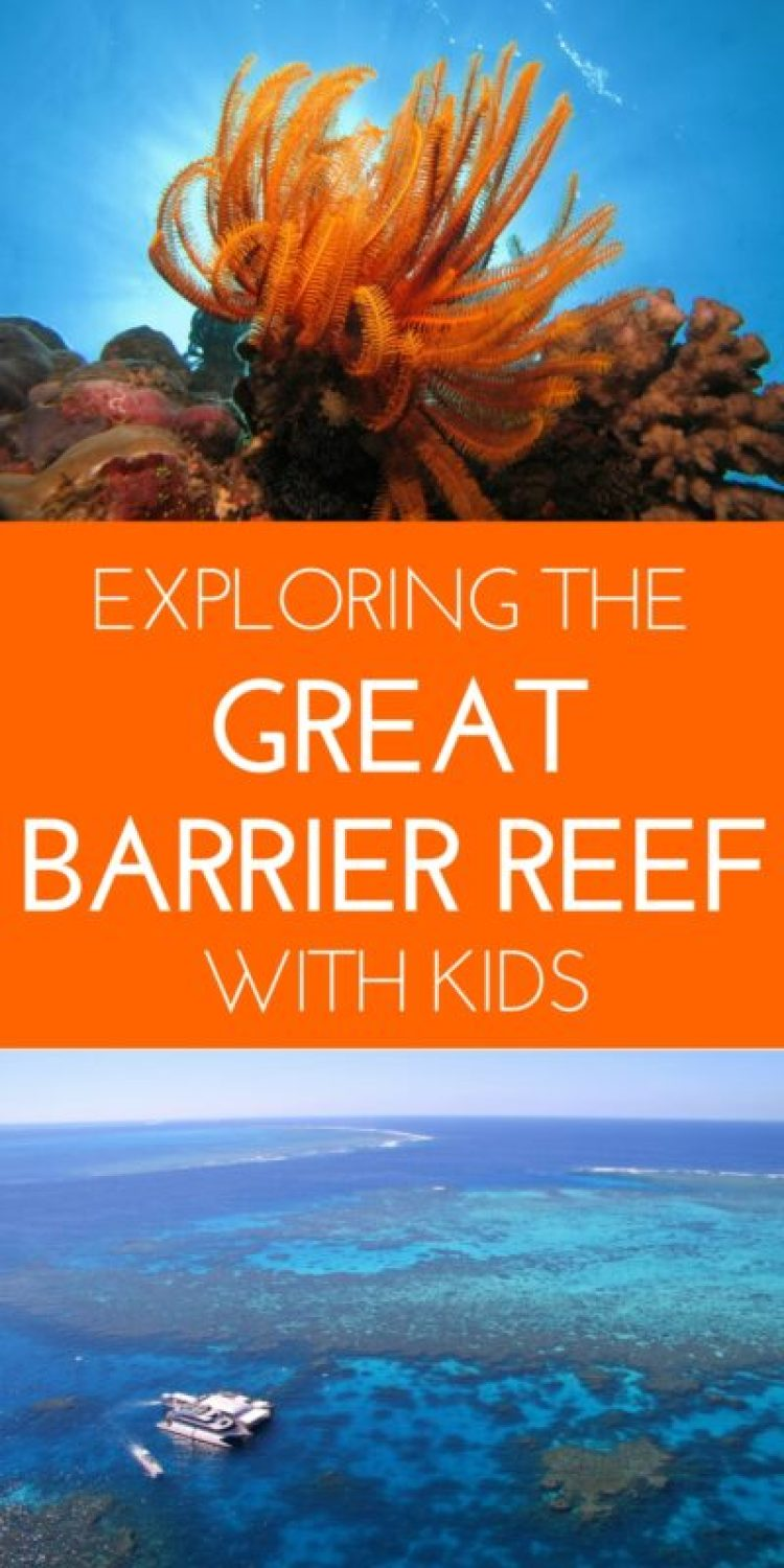 The Great Barrier Reef is truly one of the world's treasures and absolutely the best thing to do in Queensland. Quicksilver Cruises offers the most complete way to see the Great Barrier Reef from Port Douglas - and they have amazing ways for kids to see the reef too! #Australia #Queensland #Cairns #PortDouglas #GreatBarrierReef #familytravel #travel #travelwithkids