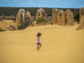 the pinnacles perth