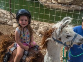 israel negev road trip-23