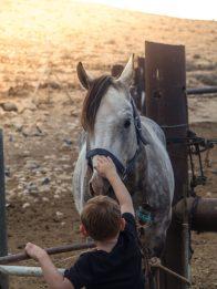 israel negev road trip-30