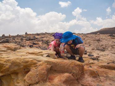 israel negev road trip-53