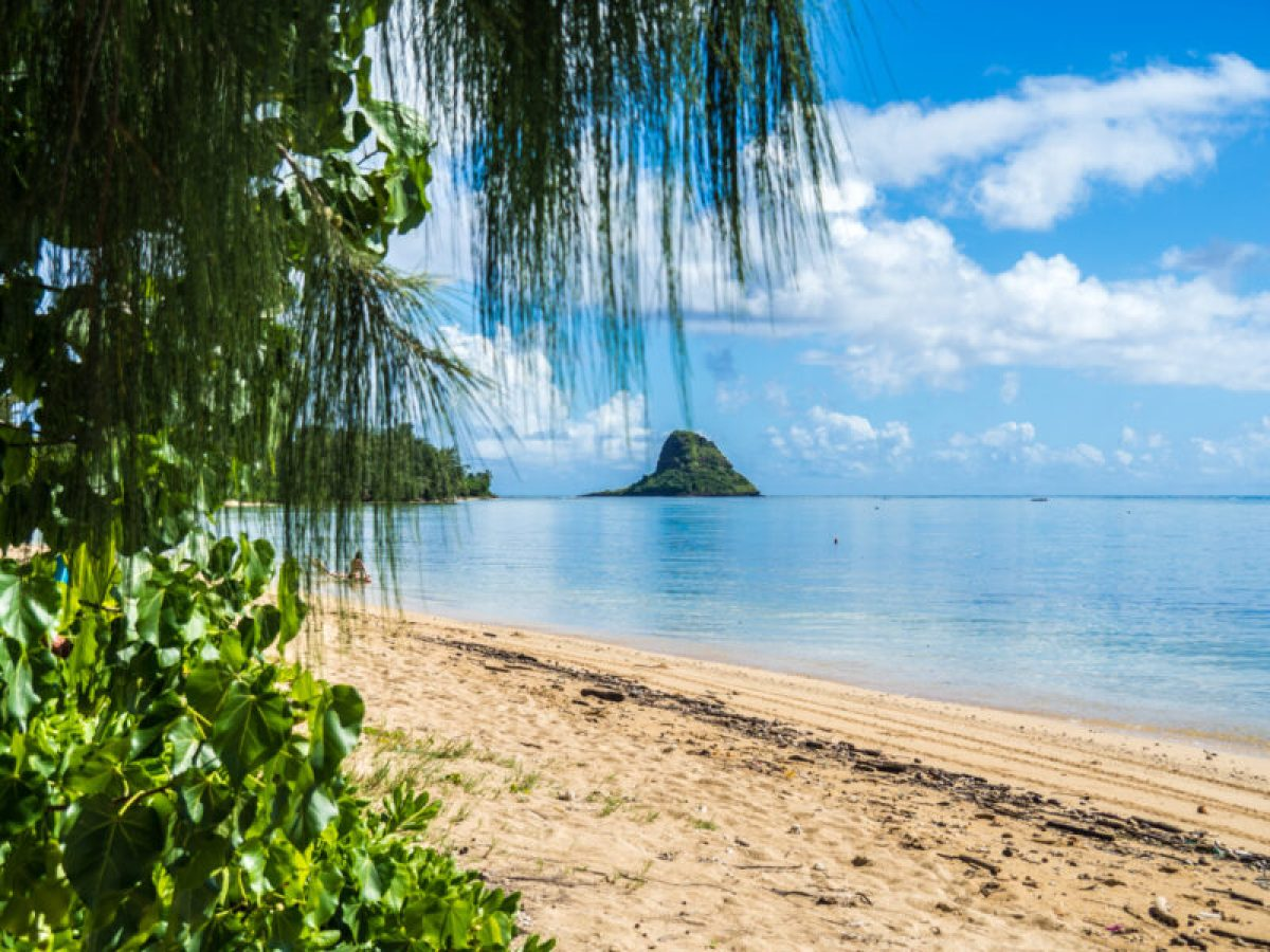 9fe785e4 Go Oahu card review: getting the most bang for your buck - The ...