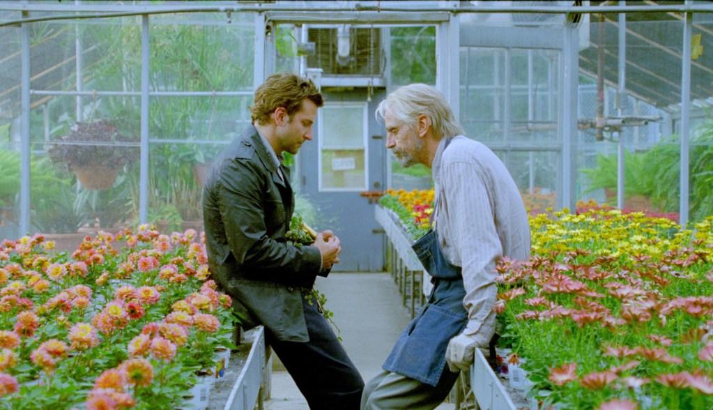 Jeremy Irons, Bradley Cooper