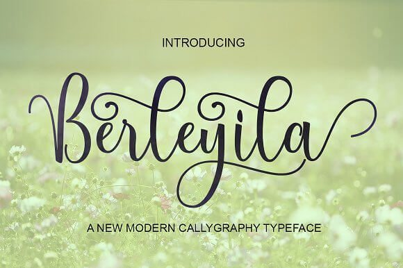 Best Selling Gorgeous Fonts Berleyila1
