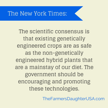 N.Y.Times: We Need GMO Wheat