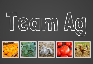 Team Ag Featured Image Size