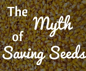 No, Farmers Don't Want to Save Seeds