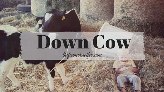 Down Cow