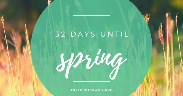 32 Days Until Spring