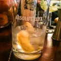 Absolut Elyx Vodka Blogger