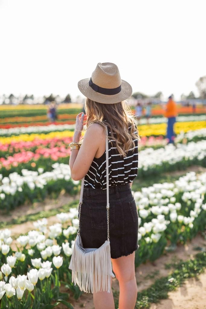 Texas-Tulips-4170