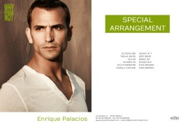 Enrique_Palacios