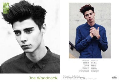 Joe_Woodcock